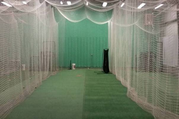 Fastpitch batting cage