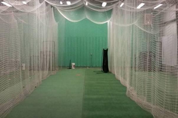 Fastpitch batting cage